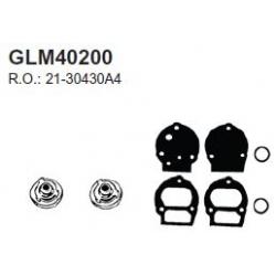 Mercury 65 HP 4cyl 70.71 cocher kit de valve. Numéro de commande: GLM40200. L.r.: 21-30430A4