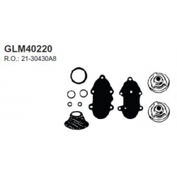 Mercure check valve kit 78-85, 76-88, 86-98, V150 V135 V175 78-98 V200, V300 3, 4 l 80-87. Numéro de commande: GLM40220. L.r.