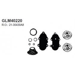 Mercury check valve kit V135 86-98, V150 78-85, V175 76-88, V200 78-98, V300 3,4L 80-87 . Bestelnummer: GLM40220. R.O.:21-3043
